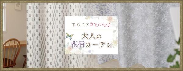 kobana_main